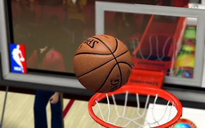 NBA 2K13 Leather Spalding Ball Patch