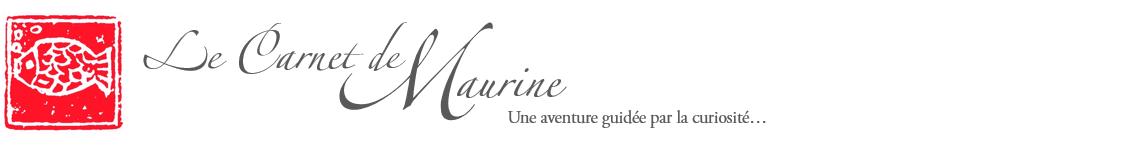 Le Carnet de Maurine - Une aventure guidée par la curiosité...