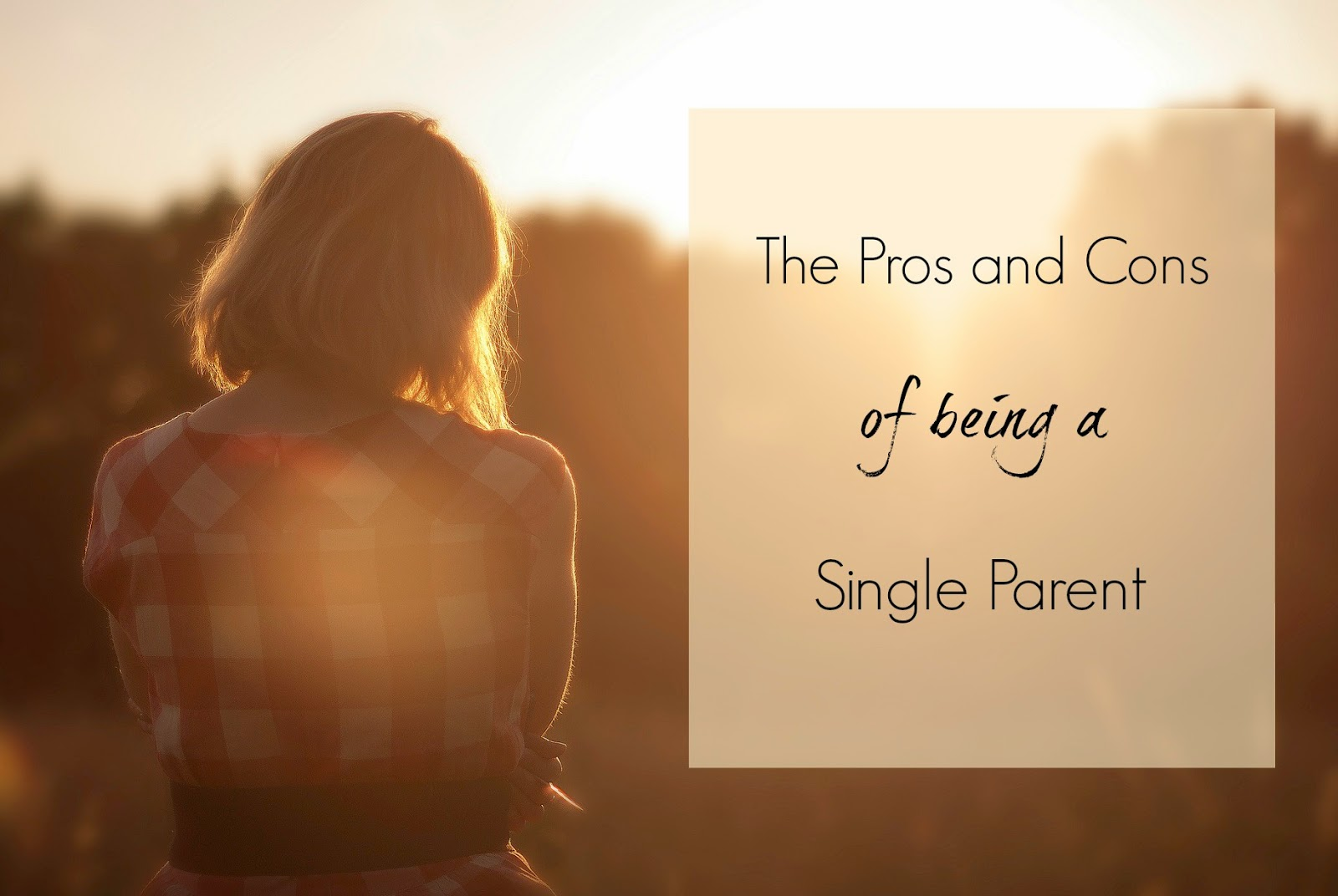 single parenting pros and cons There are a lot of factors that come into play when assessing the lives of single parent vs two the pros and cons of a single parents are under.