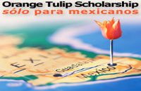 Orange Tulip Scholarship