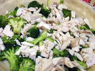 Broccoli and turkey in pie shell.