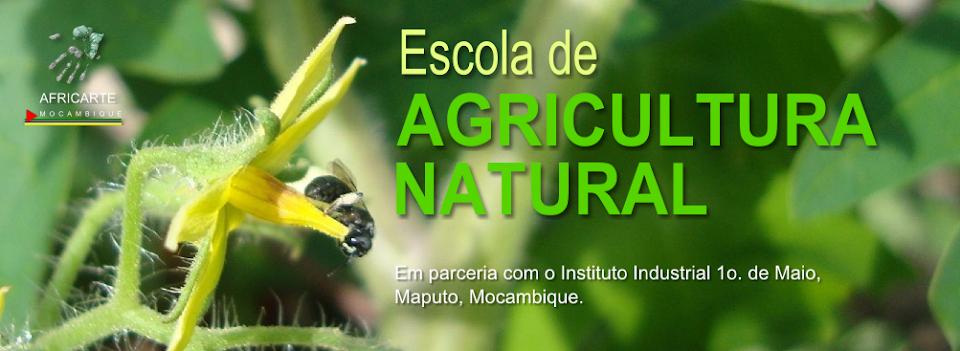 Curso de Agricultura Natural