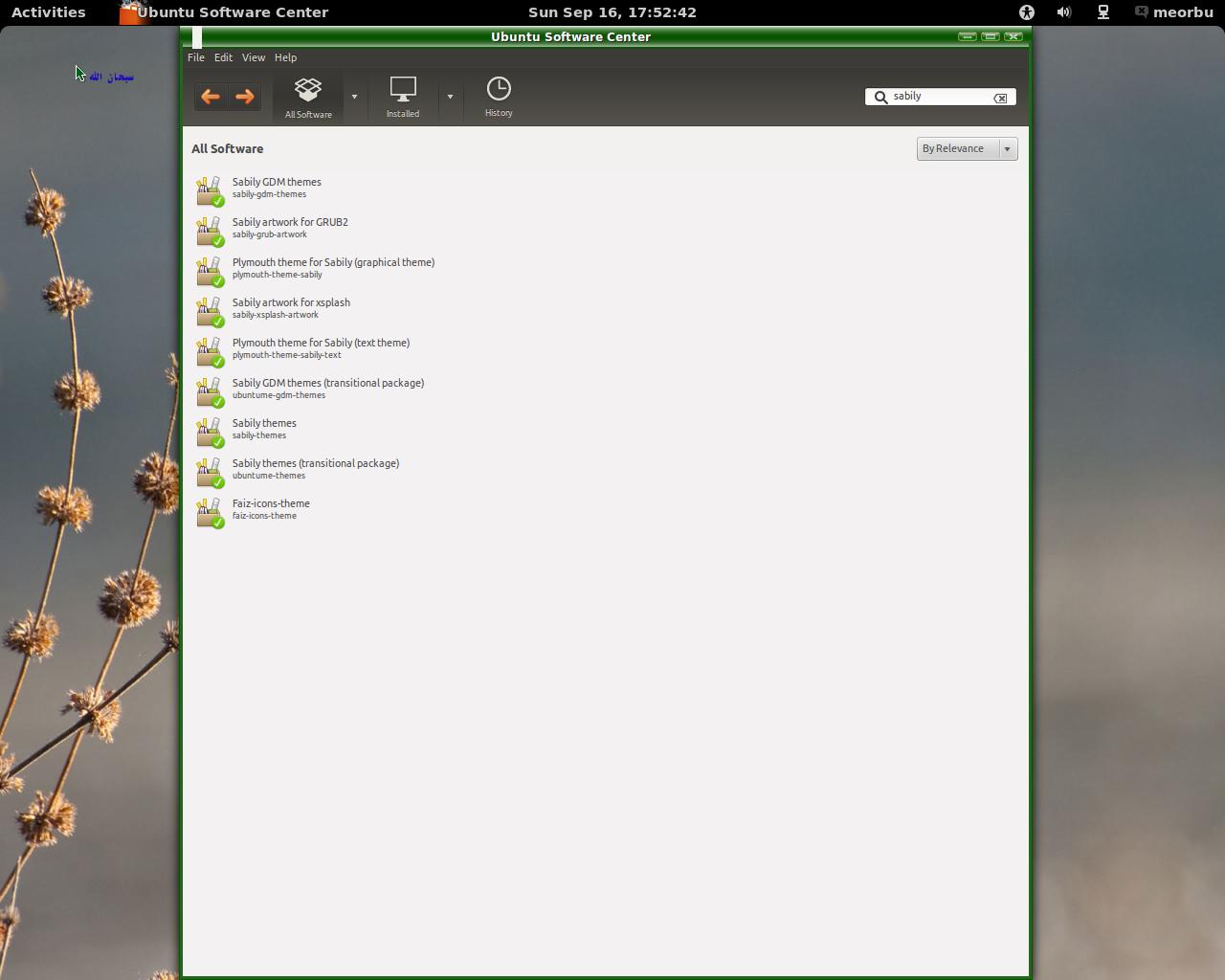 install go ubuntu 12.04