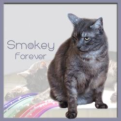 RIP SMOKEY