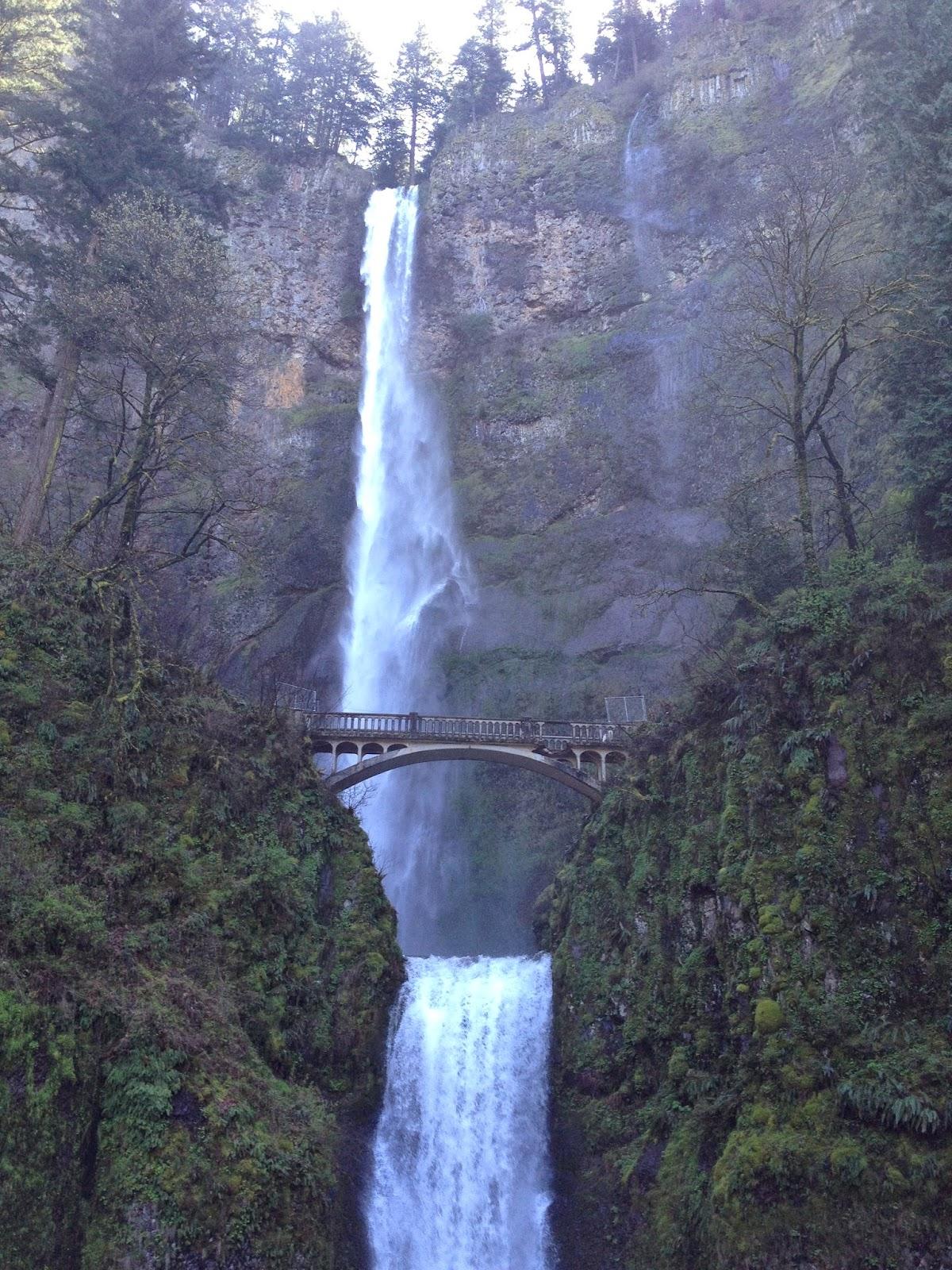 multnomah falls, water falls oregon, beautiful waterfalls