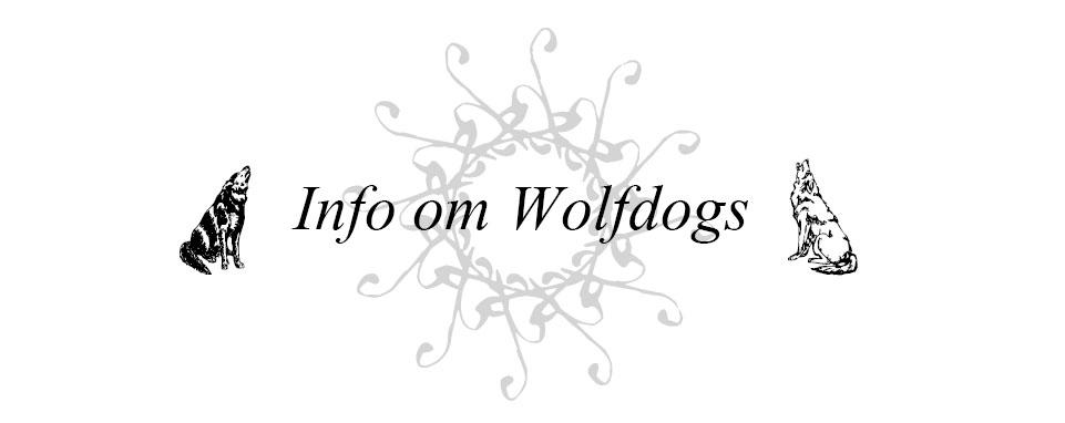 Info om Wolfdogs