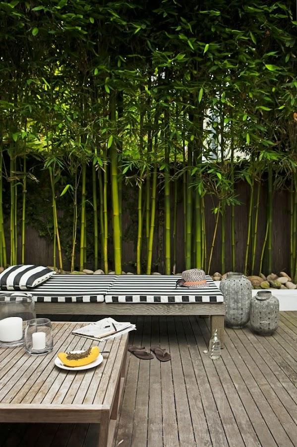 Una terraza que transmite paz y serenidad