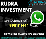 Rudra Investment