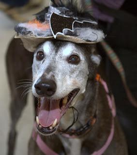 Emma in her Halloween hat