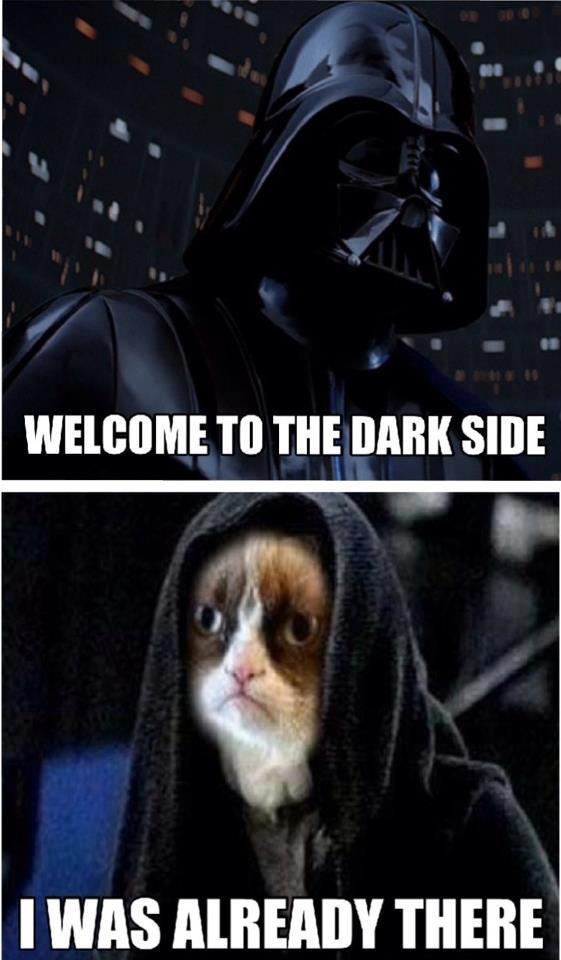 Grumpy cat meme darth vader