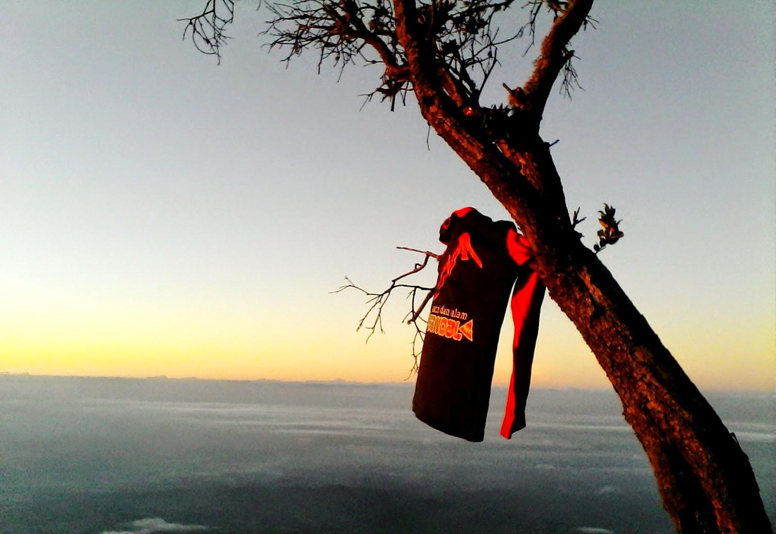 mendaki gunung sumbing