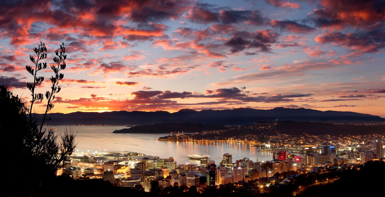 World of the Written Word: Wellington is like the Tardis...