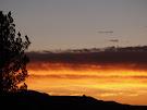 AZ sunset...