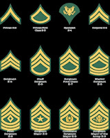 2014 Army Ranks