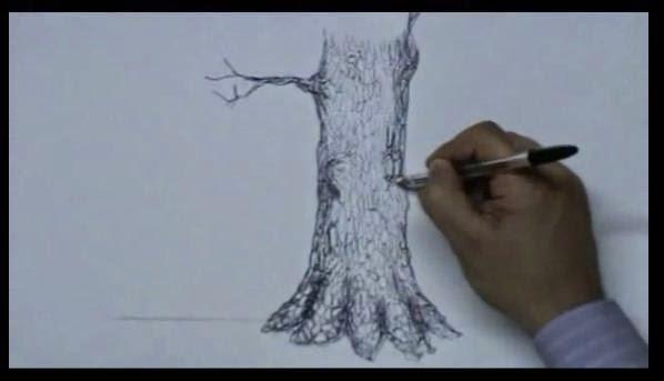 per disegnare piante