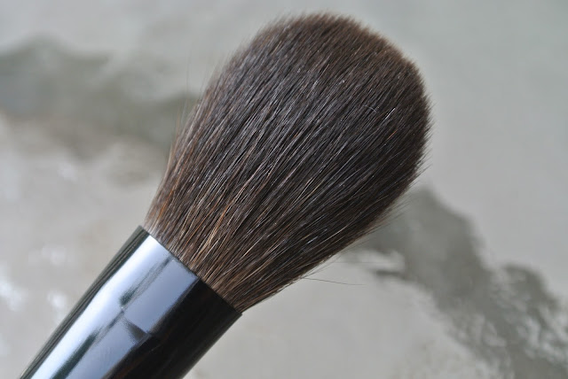 Cheek Brush Up Close