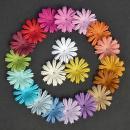 http://www.stonogi.pl/kwiatki-papierowe-mixed-colour-summer-blooms-saa165-p-17129.html