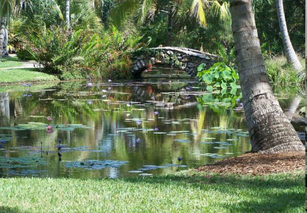 Robert\'s Tropical Paradise Garden: Miami Beach Botanical Garden is ...