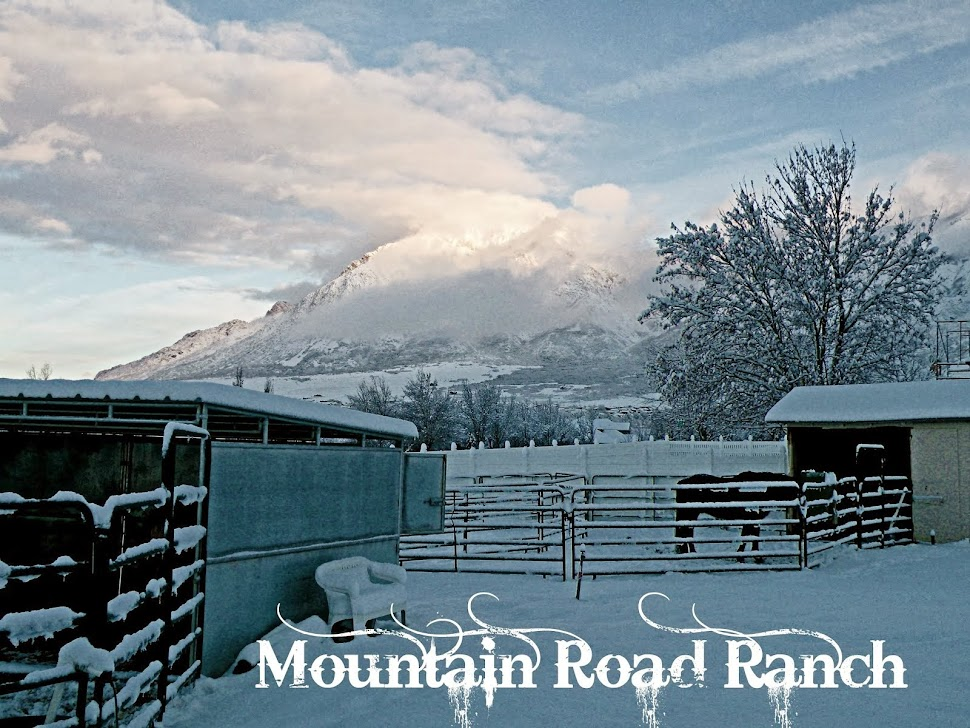 MountainRoadRanch