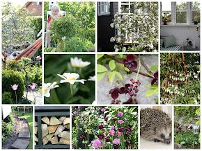2012 - Haveåret kort.