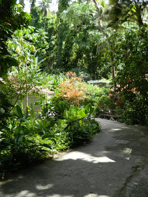 St. Lucia Diamond Botanical Gardens path Soufriere by garden muses-not another Toronto gardening blog