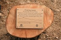 Placa commemorativa de la plantació del nou Pi de Can Cartró el 2010