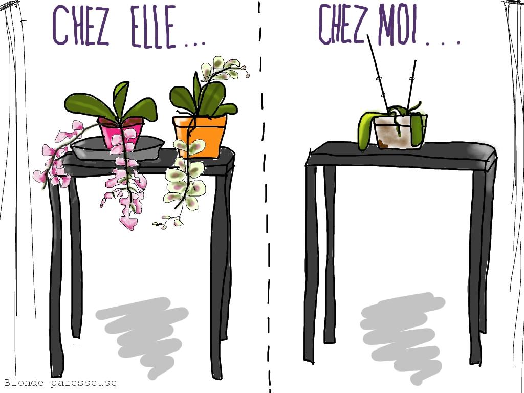 blonde paresseuse: le complexe de l'orchid�e