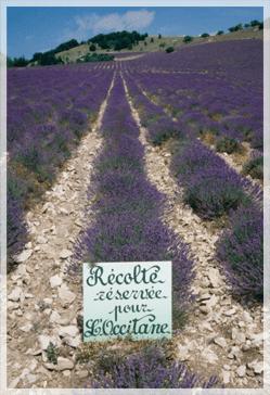 magasins d'usine en Provence