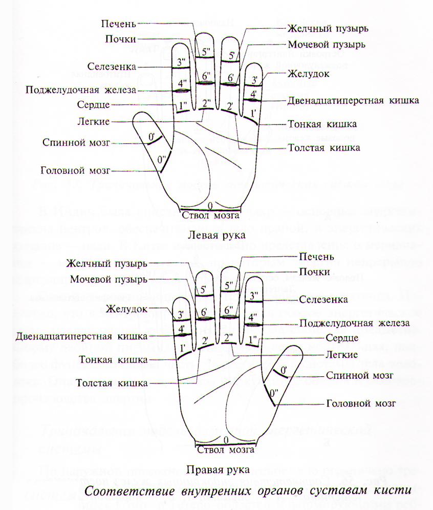 Связь болезней органов дыхания и суставов если болят колени и тазобедренные суставы