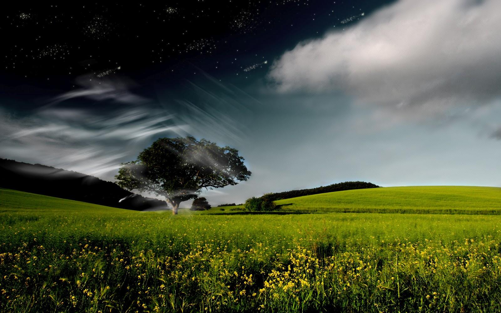 http://4.bp.blogspot.com/-vlawpm_MeHE/UB0C0RwTfbI/AAAAAAAACI0/FIgKOkrQAbY/s1600/hd-wallpaper-nature2.jpg