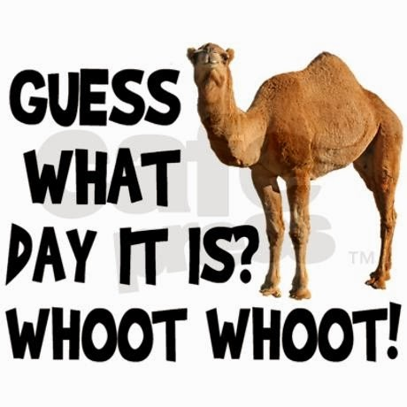 Positively Passionate About Teaching: Happy Hump Day!
