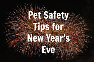 New Year's Eve Pet Safety Tips: Fireworks and Pets Don't ...