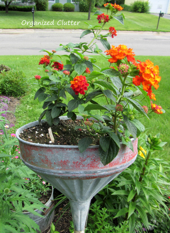 Funnel on a Broomstick Planter www.organizedclutterqueen.blogspot.com