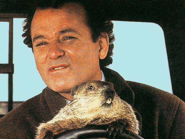 groundhog day bill murray quotes. groundhog day bill murray