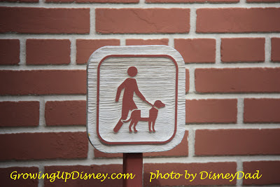 growing up disney world magic kingdom service animals