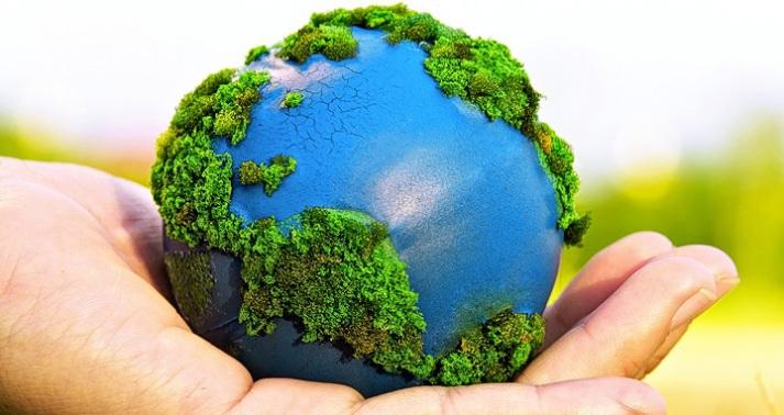 El problema de la subjetividad jurídica en los derechos del medio ambiente y de los animales