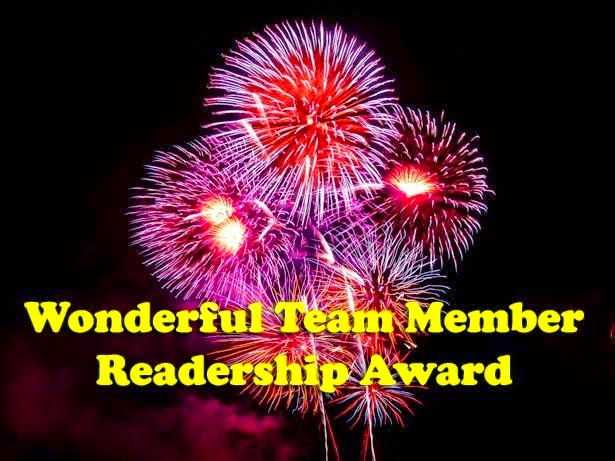 PREMIO WONDERFUL TEAM MEMBER READERSHIP AWARD