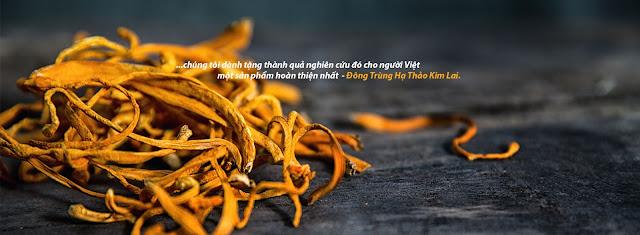 Đông Trùng Hạ Thảo Việt Nam Kim Lai