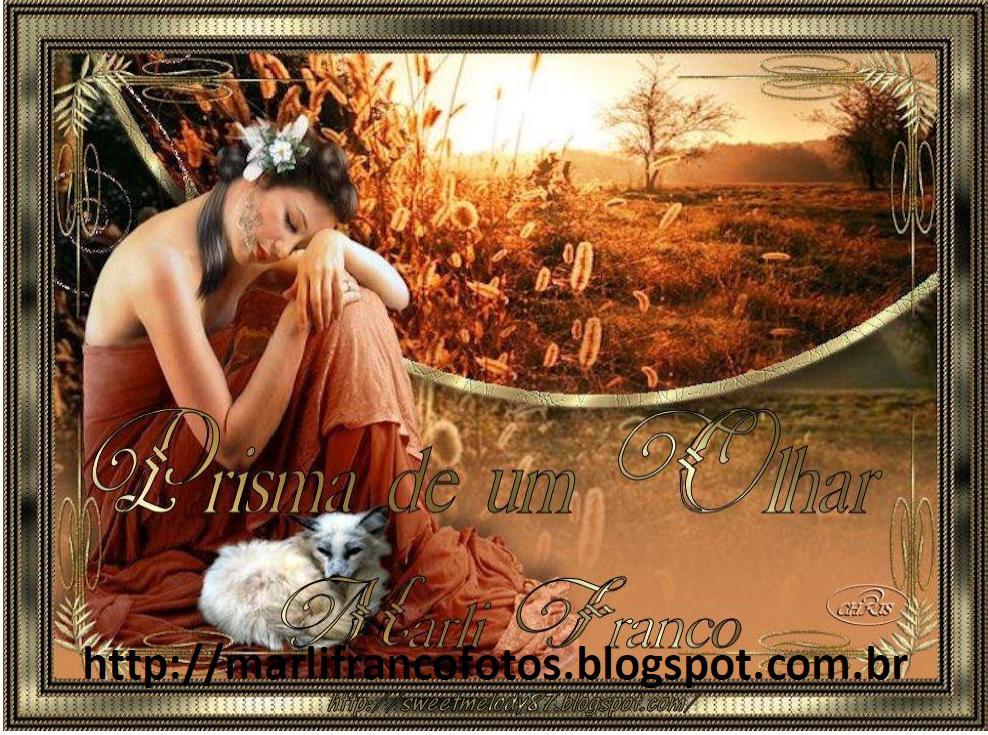Banner - Fotos - Prisma de Um Olhar - Marli Franco