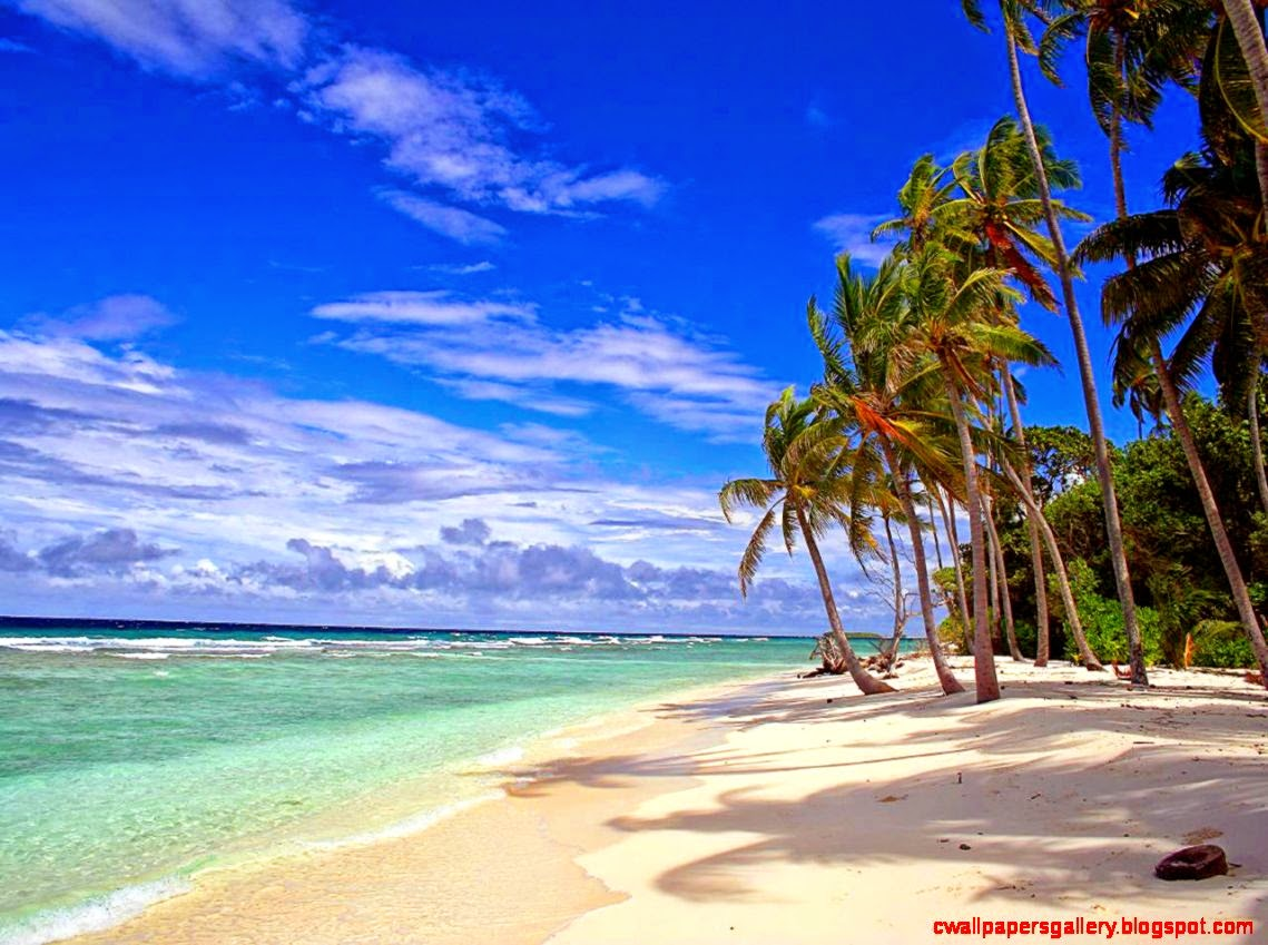 tropical island backgrounds - photo #25
