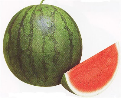 Red Watermelon, Red Watermelons, Red Watermelon Fruit