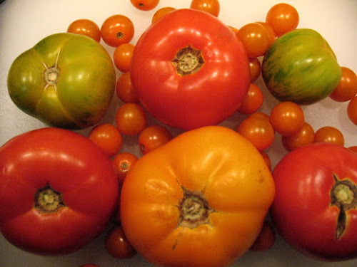 Heirloom and Other Tomatoes