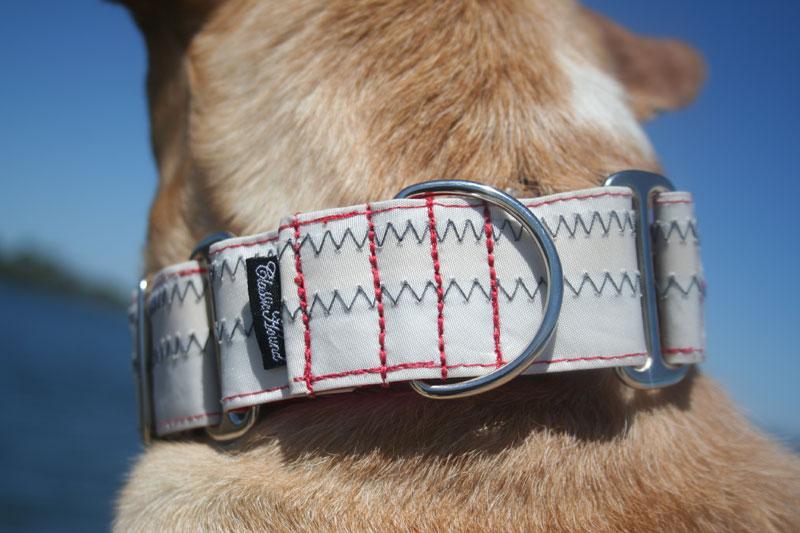 Sturdy Dog Collars