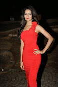 Glamorous Shanvi latest photos in Red-thumbnail-13