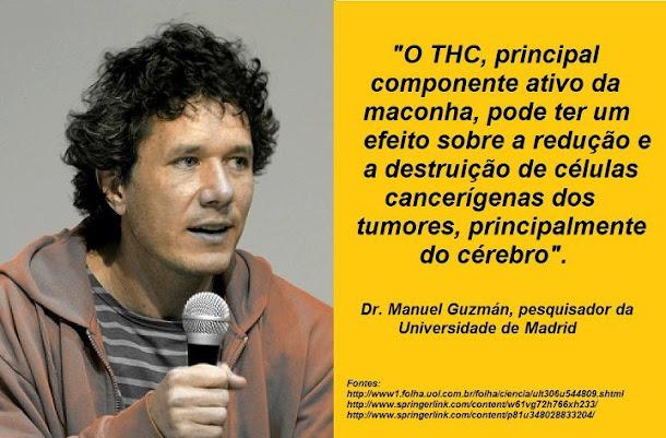 O THC PODE CURAR
