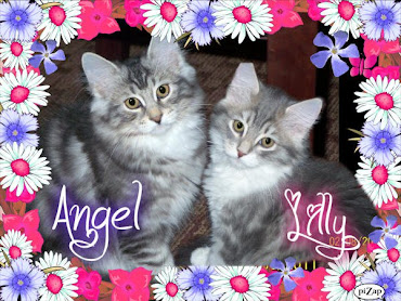 Angel and Lilly