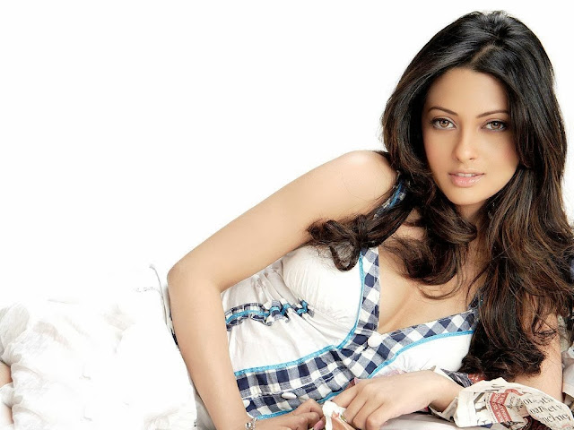 Riya Sen Wallpapers Free Download