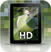 Hình nền đẹp HD cho iPad, iPhone, ipod touch