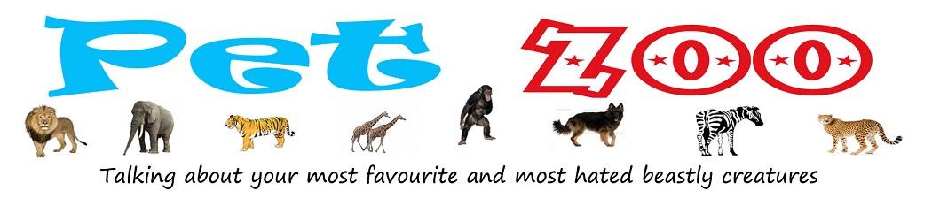 Pet Zoo