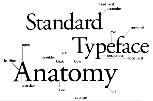 art109 miami the anatomy of a letter of type a glossary and illustrative explanation of